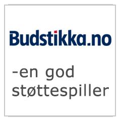 Budstikka